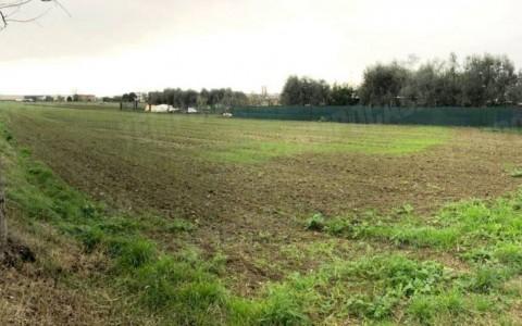 Terreno agricolo in zona collinare a Tarcento